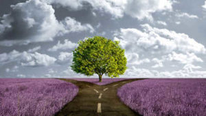 Psicologa psicoterapeuta a Foggia. Esperta in terapie familiari